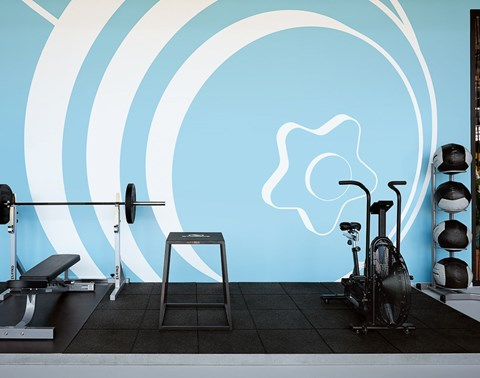 Weights and cardio equipment in front of a blue feature wall at The Student Hotel Groningen gym