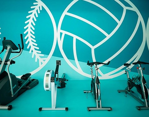 Cross-trainer, rowing machine and two exercise bikes in a row in front of a teal feature wall